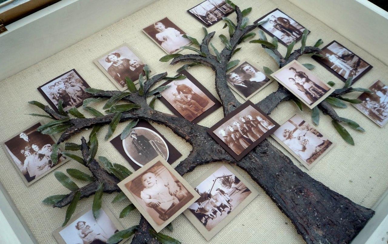 как оформить генеалогическое древо